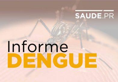 Secretaria da Saúde confirma 848 casos de dengue no Paraná