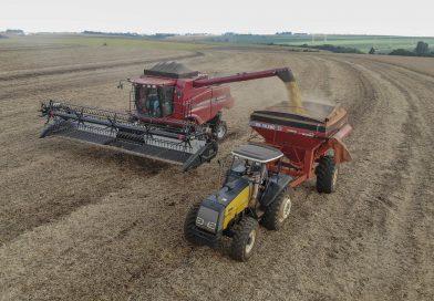 Paraná Safra de grãos será de 34,4 milhões de toneladas, aponta boletim da Agricultura