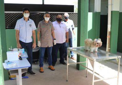 Guaíra SEMAIM inicia vacinação antirrábica em cães da cidade